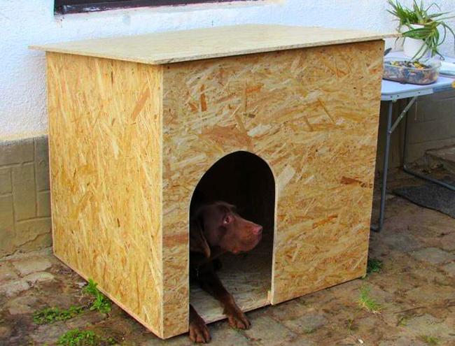Kutyaház téliesítése