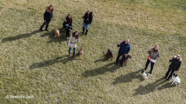 A magyar, aki pórázon tartja a világ kutyáit, de a hamisítókkal nem bír