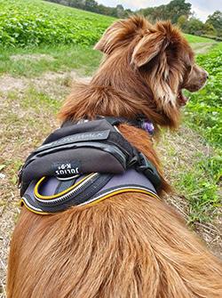 Longwalk mit GPS