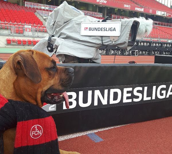 Ma(s/x)kottchen des 1.FC Nürnberg